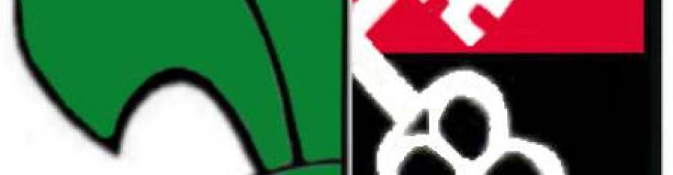 logo hufiec zhp luban